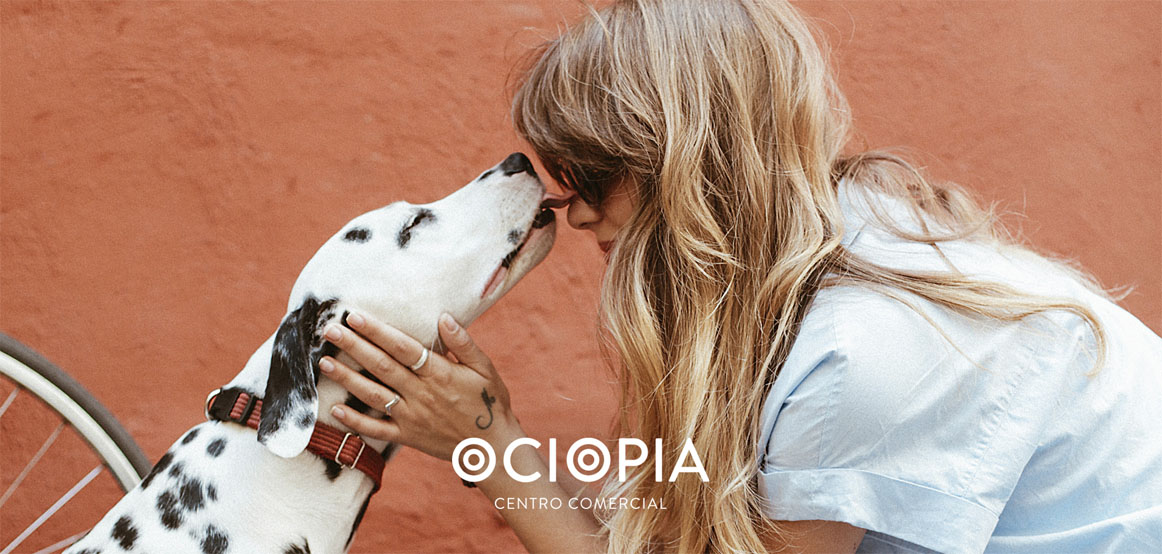 dogfriendly-ociopia-web
